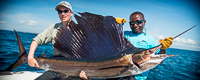Kenya - Sailfish
